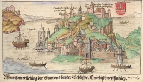 Ansicht von Belgrad Cgm 895, Bl. 235r